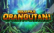 Gold Pile Orangutni